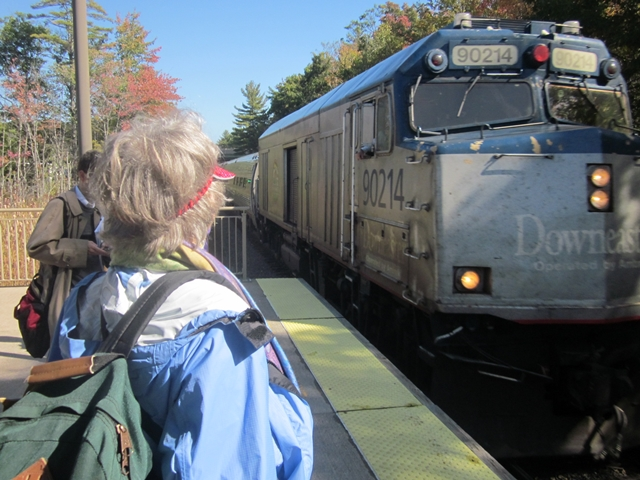 0000 DownEaster