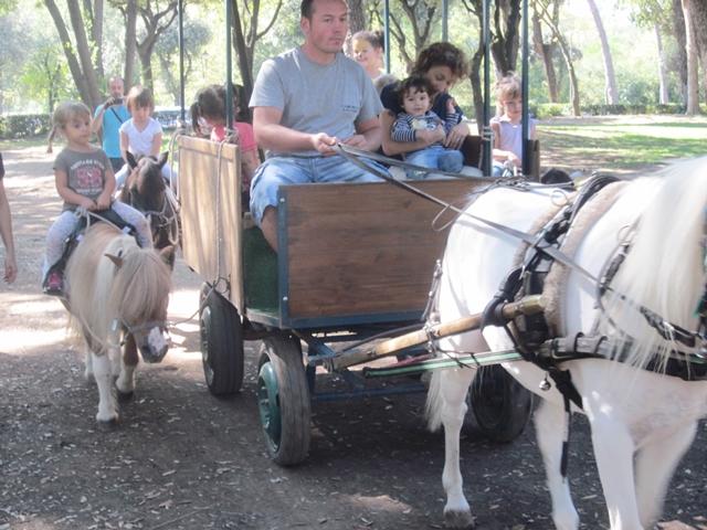 0170 Pony Rides