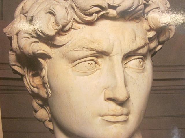 0785 Florence David Face