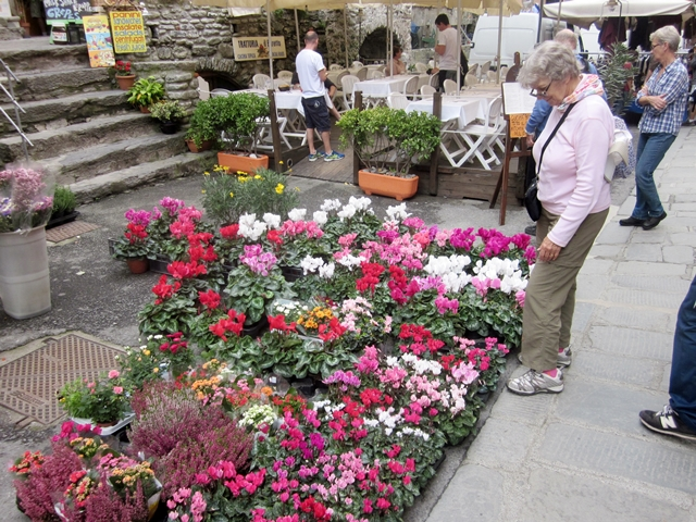 1460 Cinq Terr Vernazza Flowers