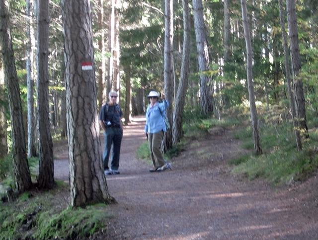 4095 Renon Hike 4