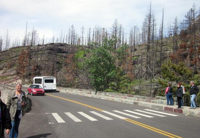 2000 Glacier Park Fire